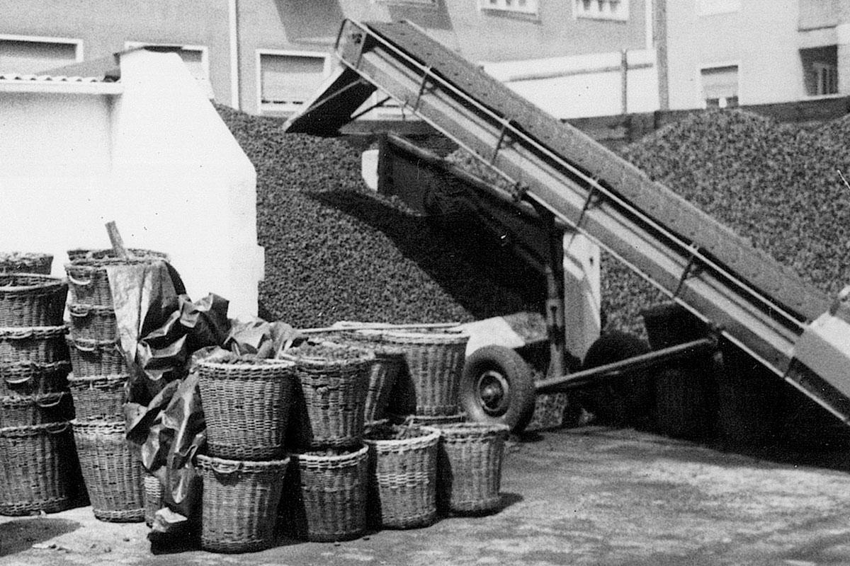 Beer Energien Kohlehalden und Förderband