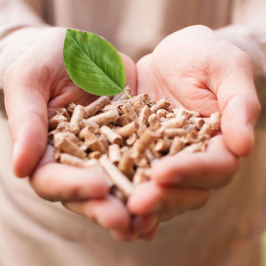 Beer Energien klimaschonende Zukunftslösungen Antistaub-Holzpellets
